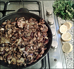 Mushroom Strog